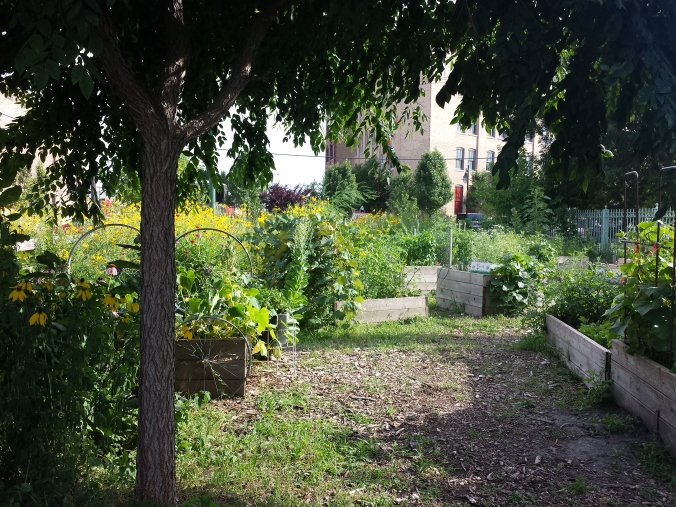El Paseo Community Garden | Empower through Nature